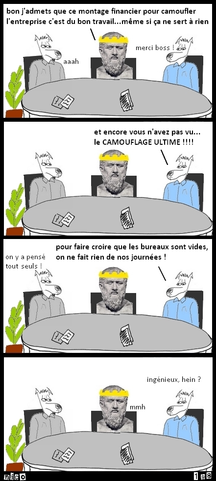 Le camouflage ultime